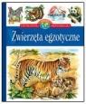 Zwierzęta egzotyczne Encyklopedia wiedzy przedszkolaka