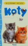 Jak się opiekować i zaprzyjaźnić Koty