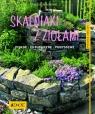 Skalniaki z ziołami Piękne Ekologiczne Pomysłowe Bergmann Heide