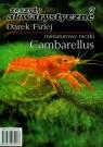 Miniaturowe raczki Cambarellus 7