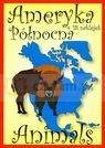 Animals Ameryka Północna + 18 naklejek