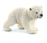 Młody niedźwiedź polarny - 14708