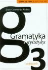Gramatyka i stylistyka 3 Język polski Podręcznik
