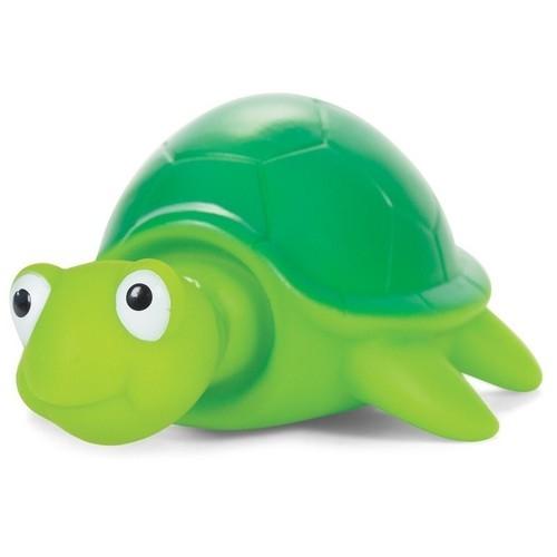 Żółwik wysuwający głowę