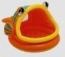 Basenik rybka z daszkiem