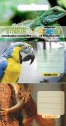 Naklejki na zeszyt Street Animals Cute 10szt