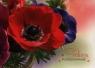 Karnet kwiaty bez napisu MIX Format B3 (koperta w zestawie) .