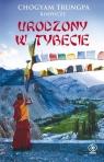 Urodzony w Tybecie Trungpa Chogyam