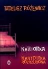 Kartoteka Kartoteka rozrzucona Różewicz Tadeusz