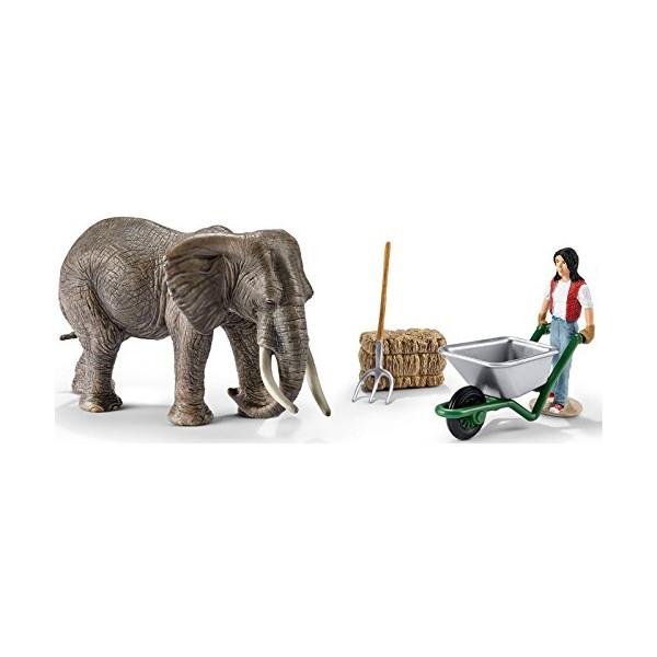 Zestaw do pielęgnacji słoni (41409)