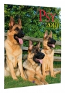 Kalendarz 2020 KSM-3 Psy AVANTI