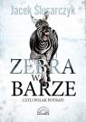 Zebra w barze czyli Polak potrafi Ślusarczyk Jacek