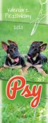 Kalendarz 2020 Pocztówkowy Psy