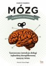 Mózg Podręcznik użytkownika Magrini Marco