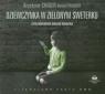 Dziewczynka w zielonym sweterku  (Audiobook) Chiger Krystyna, Paisner Daniel