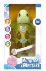Zabawka muzyczna- żółwik (118104)