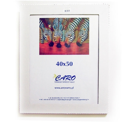 Antyrama plexi 40x50 cm