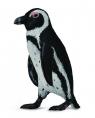 Pingwin przylądkowy S (004-88710)
