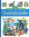 Zwierzęta wodne Encyklopedia wiedzy przedszkolaka  Stańczewska Aleksandra