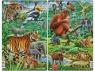 Dżungla (Indie i Południowo-Wschodnia Azja)