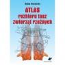 Atlas rozbioru tusz zwierząt rzeźnych Olszewski Adam