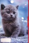Teczka rysunkowa A3 Kot (59334)