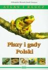 Płazy i gady Polski Atlas i klucz