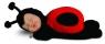 Lalka Anne Geddes Śpiąca Biedronka (AN579111)