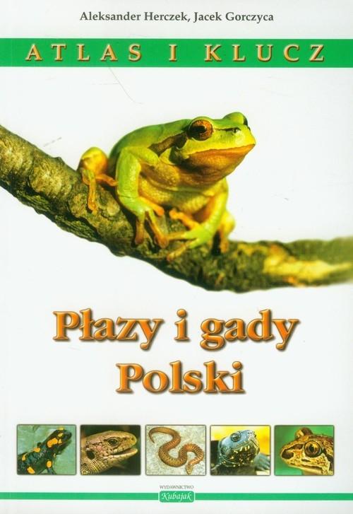 Płazy i gady Polski Atlas i klucz Herczek Aleksander, Gorczyca Jacek