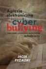 Agresja elektroniczna i cyberbullying