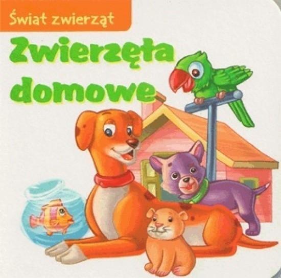 Zwierzęta domowe Świat zwierząt Skwark Dorota