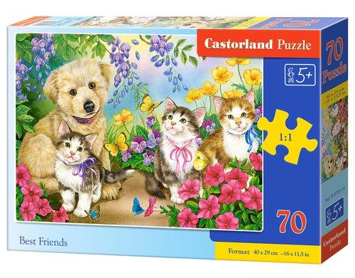 Puzzle 70: Best Friends (B-070114)
