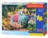 Puzzle 100: Secret Trail<br />B-111114
