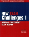 Exam Challenges New 1 Exam Trainer
