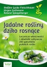 Jadalne rośliny dziko rosnące. Lecznicze właściwości i składniki odżywcze 200 gatunków polskich roślin (wyd. 2020)