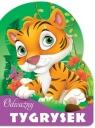 Odważny Tygrysek