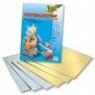 Blok z papierem złotym/srebrnym A4 10 arkuszy