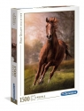 Puzzle High Quality Collection The Horse 1500