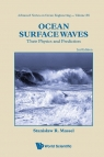 Ocean Surface Waves
