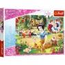 Puzzle 200: Disney Princess - Marzenie o miłości  (13204)