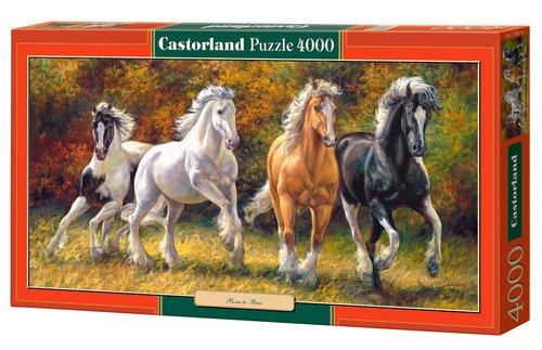 Puzzle Born to Run 4000 (C-400119)