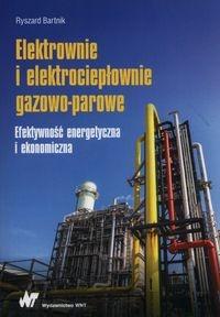 Elektrownie i elektrociepłownie gazowo-parowe Bartnik Ryszard