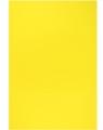 Arkusze piankowe 20x29 10 ark.cytrynowy folia
