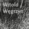 Witold Węgrzyn Nieuchwytna materialność Węgrzyn Witold