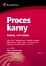 Proces karny Kazusy i ćwiczenia Hofmański Piotr, Zgryzek Kazimierz, Górski Adam