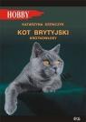 Kot brytyjski krótkowłosy Szewczyk Katarzyna