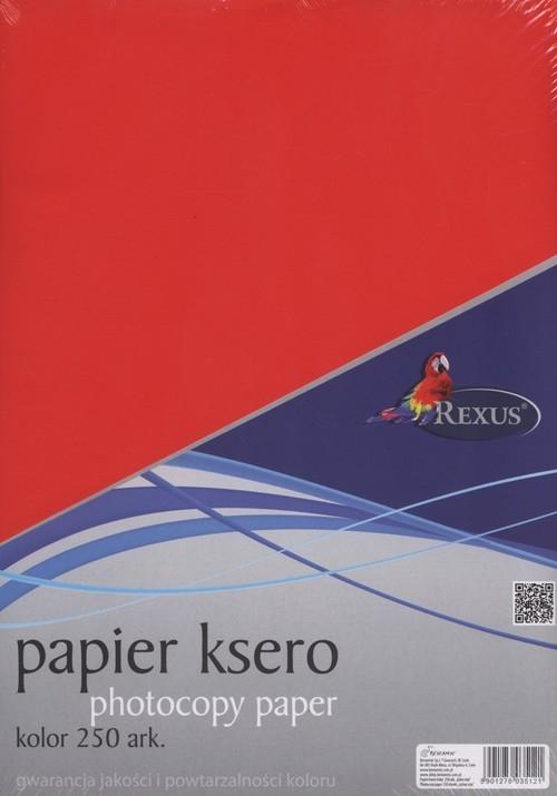 Papier ksero A4 250 arkuszy kolor mix