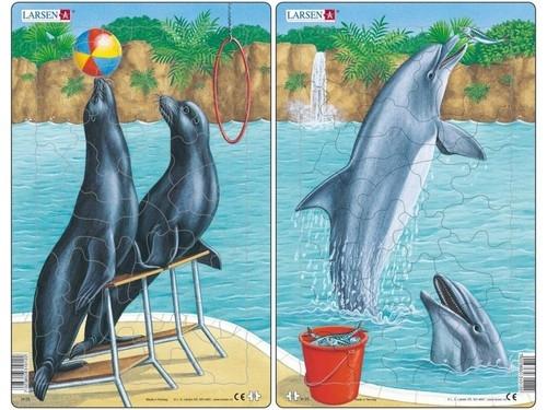 Puzzle Lwy morskie i delfiny 35