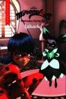 Biedronka i czarny kot T.3 Przygody. Lalkarka praca zbiorowa