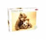 Puzzle Puppy and a Teddy Bear 1000 (40912)